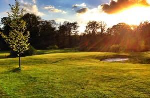 golfbaan-zonsondergang